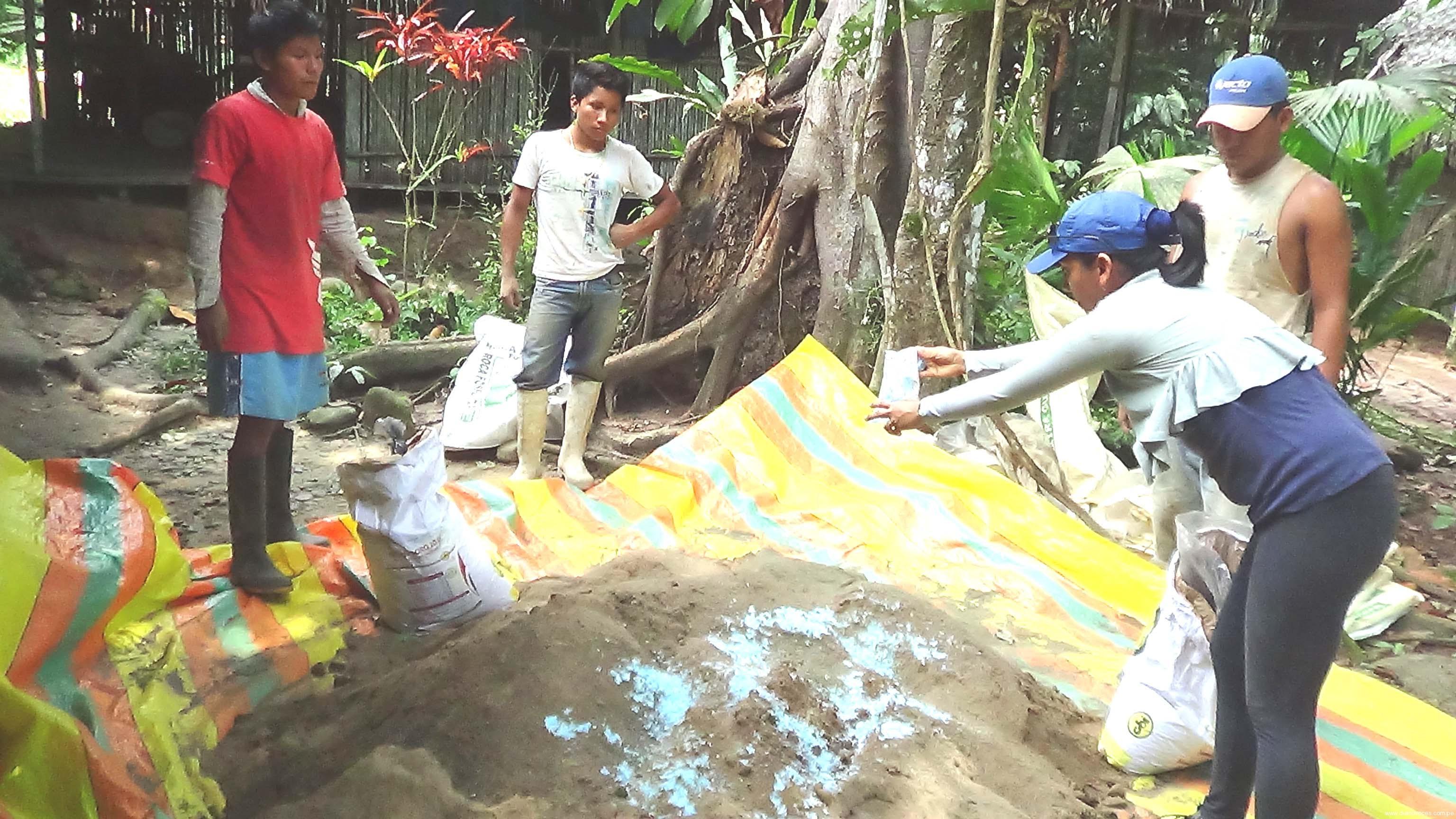 Agricultores reciben fertilizantes  para cultivo de cacao