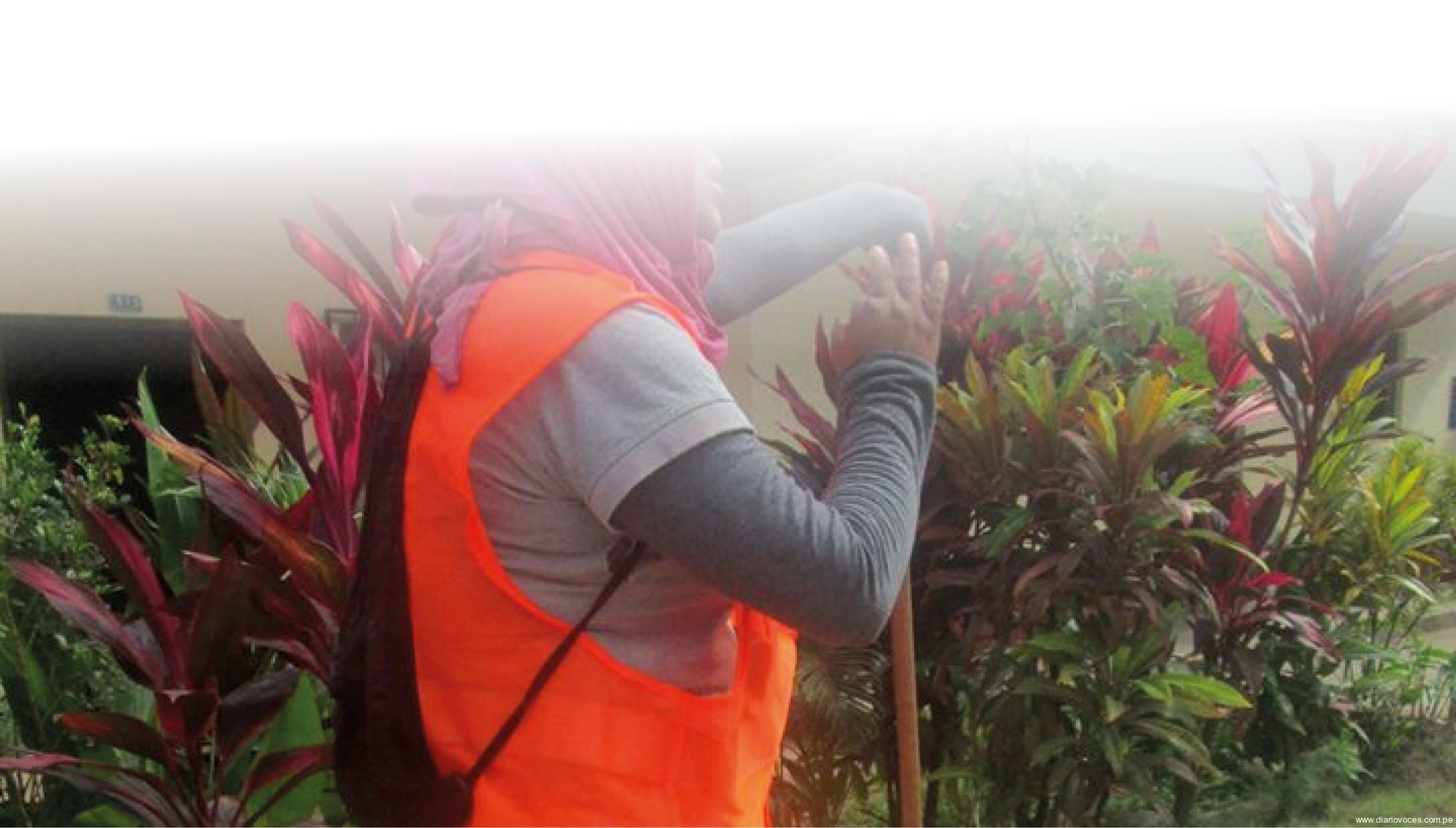 Visten de naranja a los trabajadores de limpieza