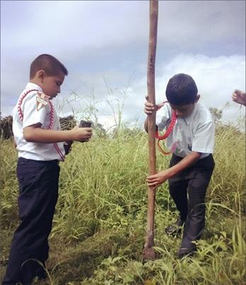 Huicungo lanza campaña de reforestación