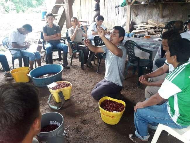 Clausuran pasantía que reunió a productores líderes de café