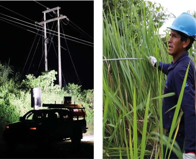 Electro Tocache activó plan de contingencia para reestablecer servicio eléctrico
