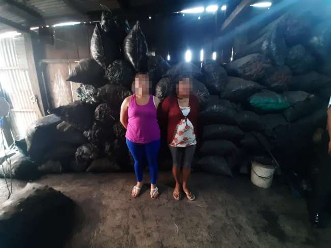 Incautan 10 toneladas de carbón ilegal en Juanjuí