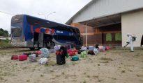 Llegaron a Tocache 85  conciudadanos varados en Lima