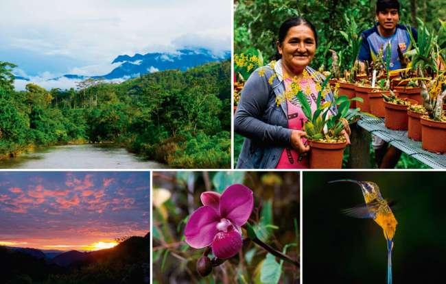 Patrimonio natural y cultural: Bosque de Protección Alto Mayo