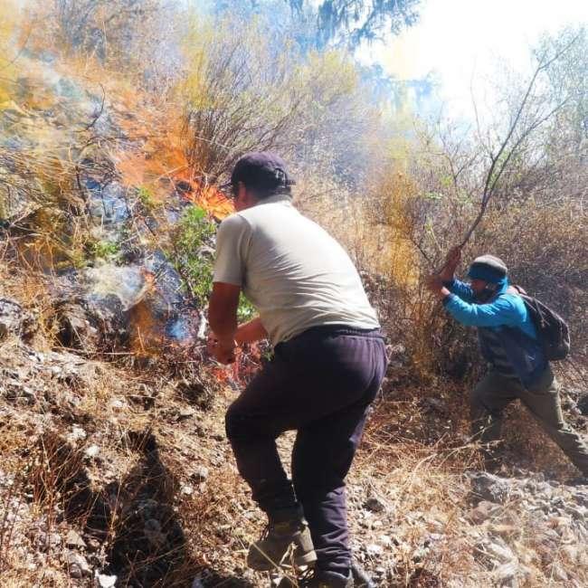 Incendio en Cerro San Mateo continúa imparable en Moyobamba.