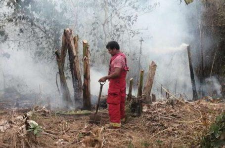 Bomberos de Bellavista necesitan apoyo para sofocar incendios forestales