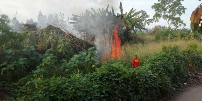 Continúan los incendios forestales en los alrededores de Tarapoto