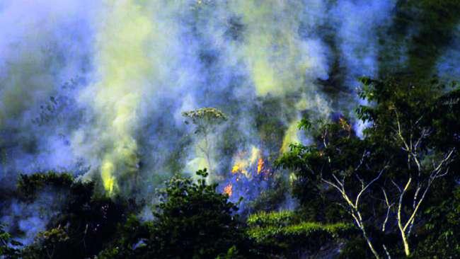 Arde San Martín!!! Incendios en Cerros Oromina y San Mateo, fuego arrasa más de 50 hectáreas