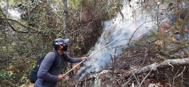 Incendio forestal arrasó con más de 5 hectáreas de Bosque en el Cerro San Mateo