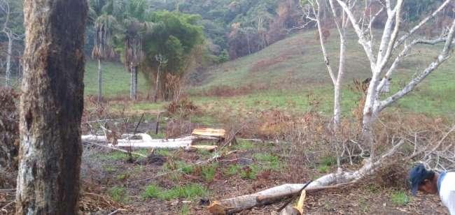 Ubican área deforestada y a punto de ser quemada en plena cabecera de quebrada Almendra