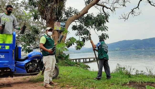 Municipalidad de Sauce reforesta orillas del Lago