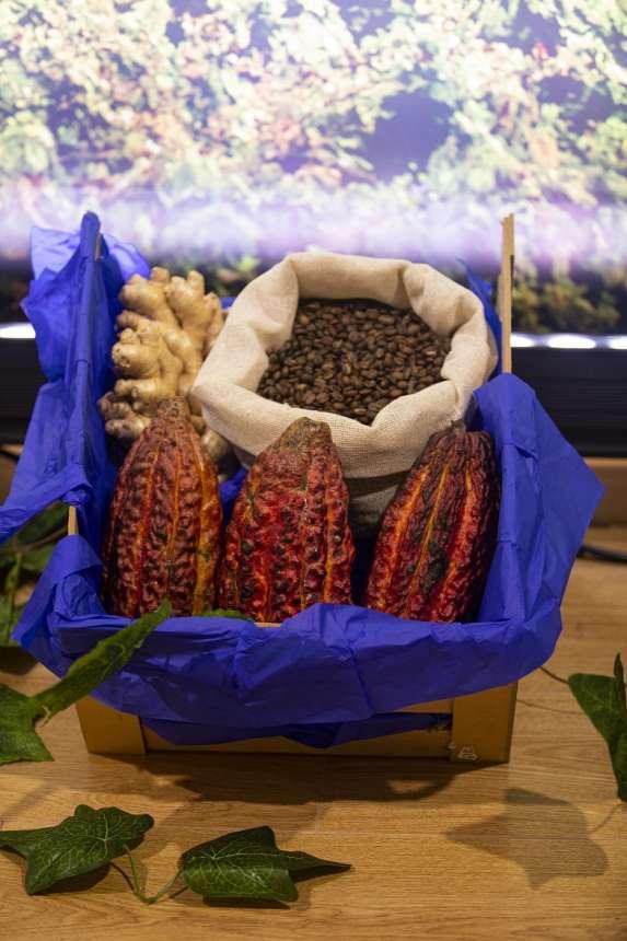 Cacaoteros y chocolateros peruanos cierran ventas por $5.7 millones en rueda virtual