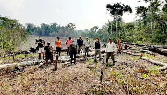 Deforestaron más de seis hectáreas de bosques en Mariscal Cáceres