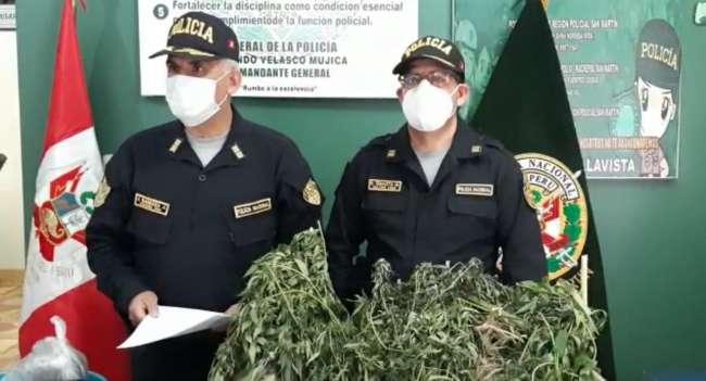 Intervienen a una persona en su vivienda y encuentran plantaciones de marihuana