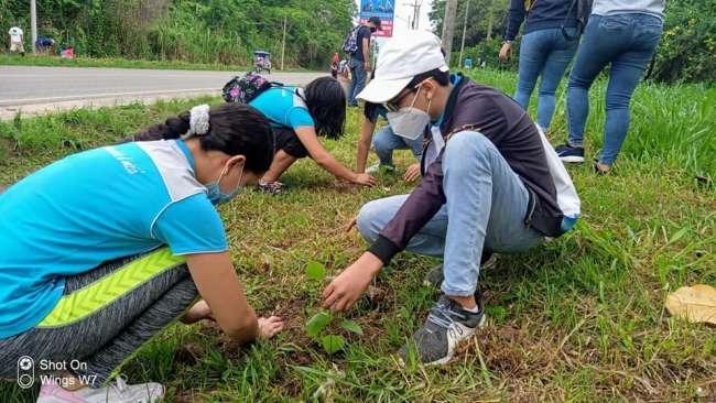 Siembran 1200 plantones como actividad por la Semana Forestal
