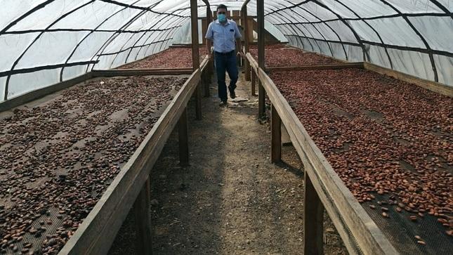 Proyecto Noa Jayatai impulsa 19 emprendimientos rurales en el distrito de Moyobamba