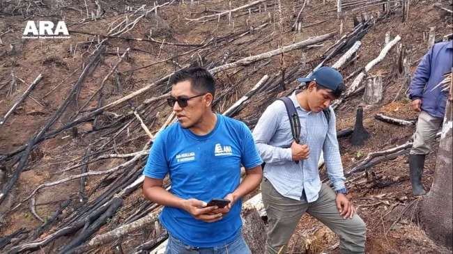 Autoridad Regional Ambiental y personal del Proyecto Boshumi, denuncian tala en cuenca quebrada que abastece de Agua a Tocache
