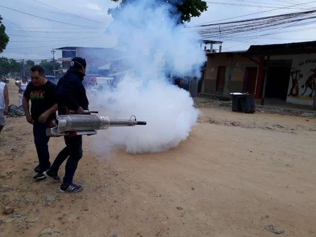 Confirman incremento de casos de Dengue en Tarapoto, Morales y La Banda de Shilcayo