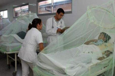 Dengue en Perú, una epidemia en medio de una pandemia
