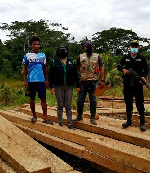 Incautan 7 mil 500 pies tablares de madera extraídos de los bosques de Balsapuerto
