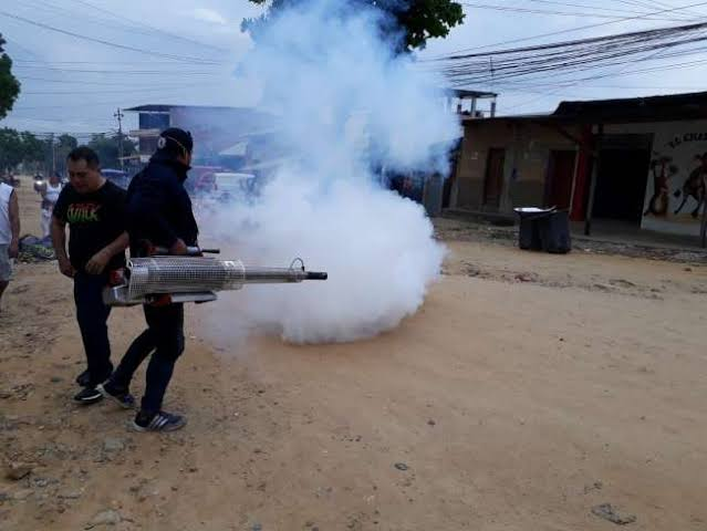 Reportan más de 740 casos de dengue en lo que va del año