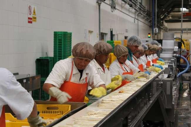 ADEX informó que sumaron US$ 7 mil 362 millones: Exportaciones crecieron 4.4% en el primer bimestre