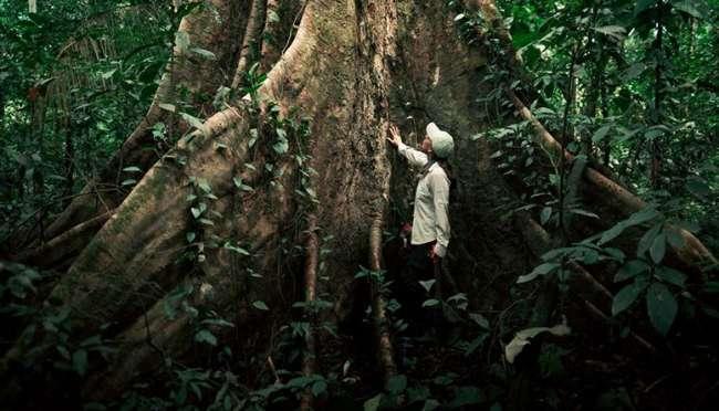 """""""Soy parte de la solución"""": nuevo tema para conmemorar la protección de la biodiversidad."""