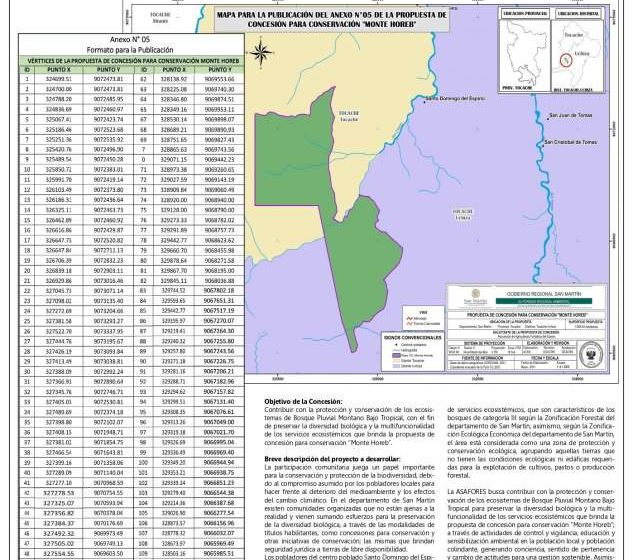 Aviso Clasificado: Gobierno Regional San Martín
