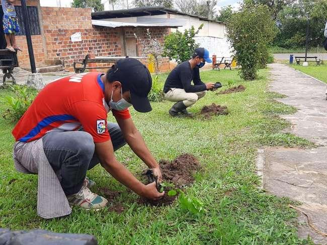 Pobladores de Lamas realizan plantación de árboles
