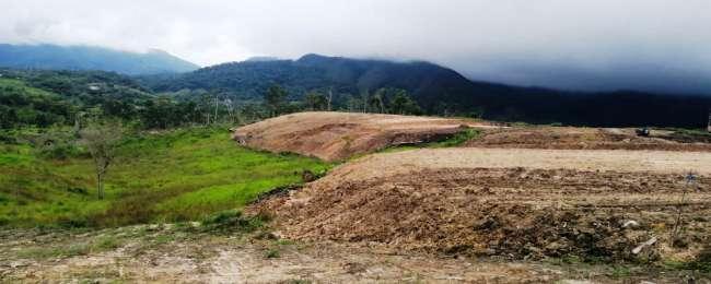 Falsas urbanizaciones destruyen escasa protección boscosa y hasta cuencas de nacientes de agua.