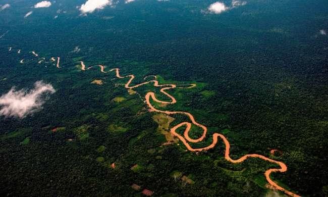 Perú fortalece alianza en su lucha por preservar los bosques amazónicos.