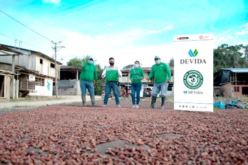 Productores de Pólvora y Campanilla venden cacao por más de S/ 500,000