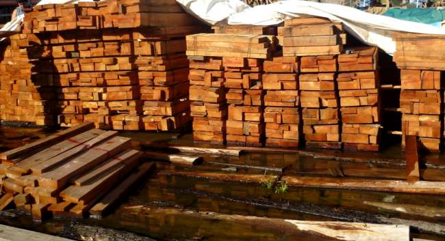 Loreto: fiscalía formula acusación contra más de 90 implicados en tráfico de madera