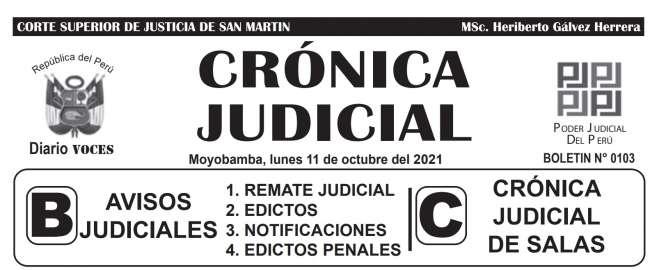 DIARIO VOCES – DIARIO JUDICIAL DEL DISTRITO JUDICIAL DE SAN MARTIN 11-10-21